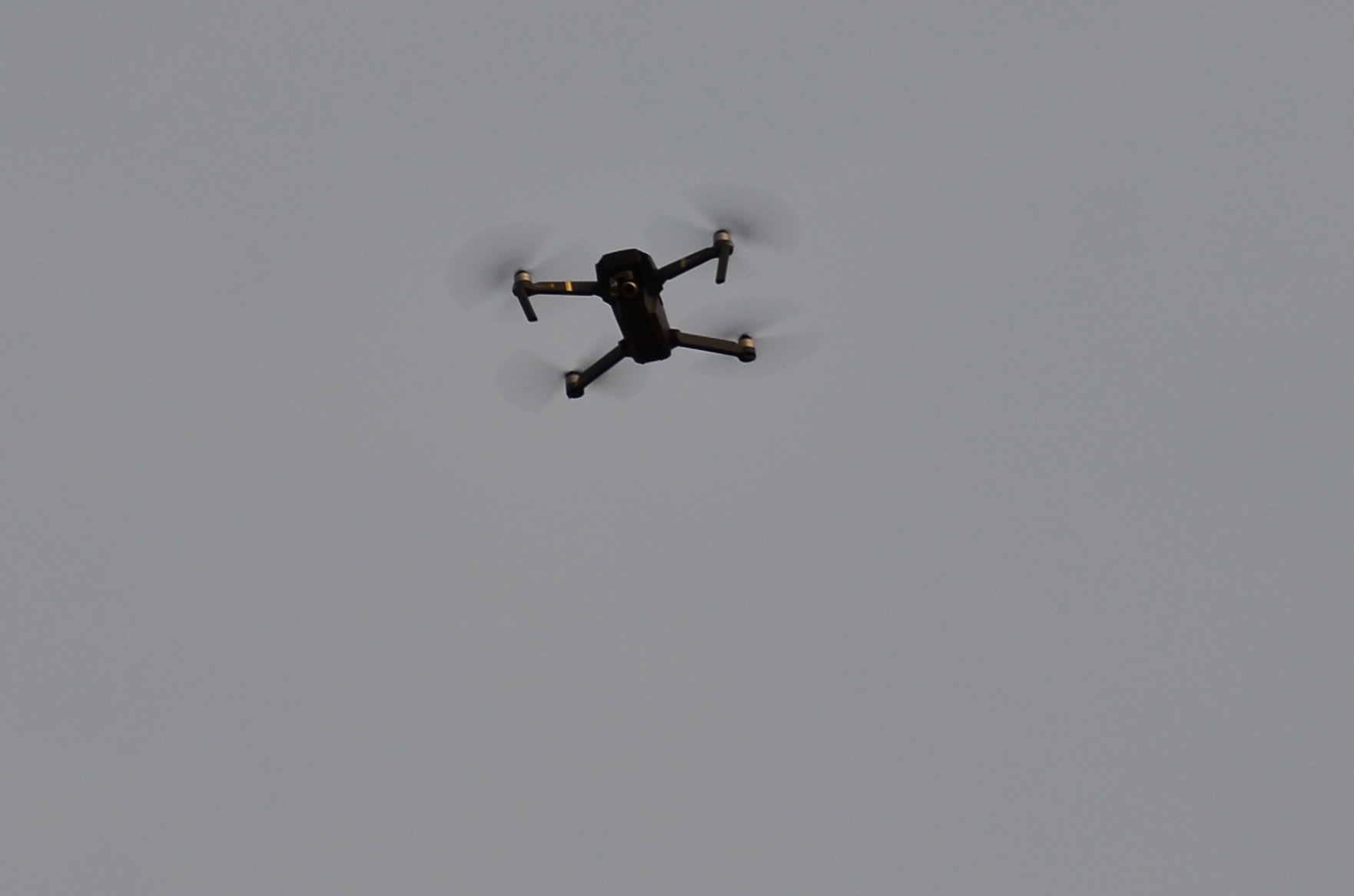 Little Drone Hovering